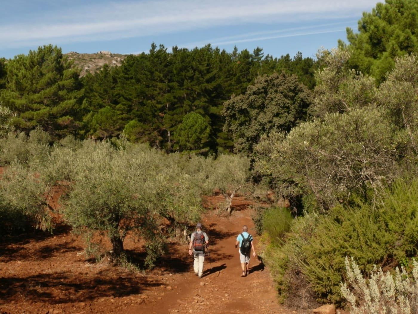 Walking in the Sierra Blanca near Marbella