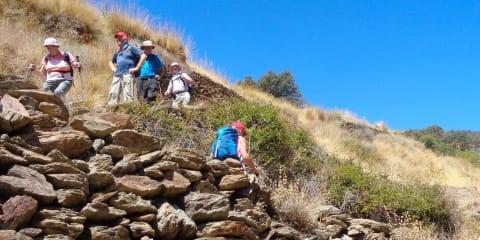 The hills of the Alpujarra