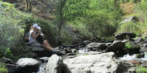 Rest stop, picnic by the river