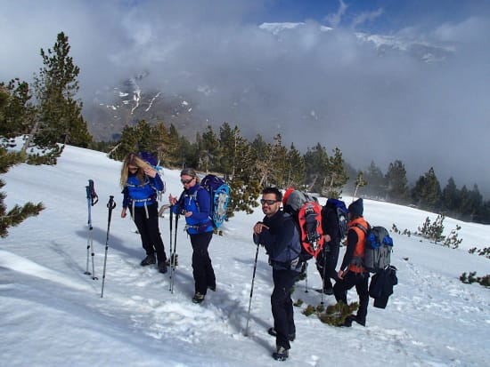 Snowshoeing in the High Forests of the Alpujarras