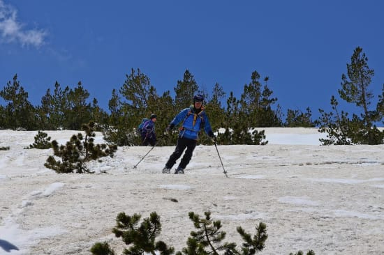 Some amazing forest skiing in the Sierra Nevada