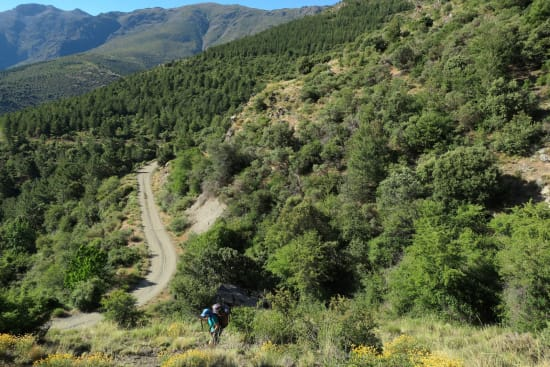 Day 1 - we leave the forest trail and head steeply up into the forest
