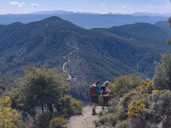 The forested hills on the descent that lead to Silleta de Padul