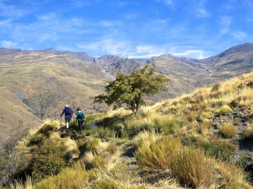 Above the Baranco de Poqueira
