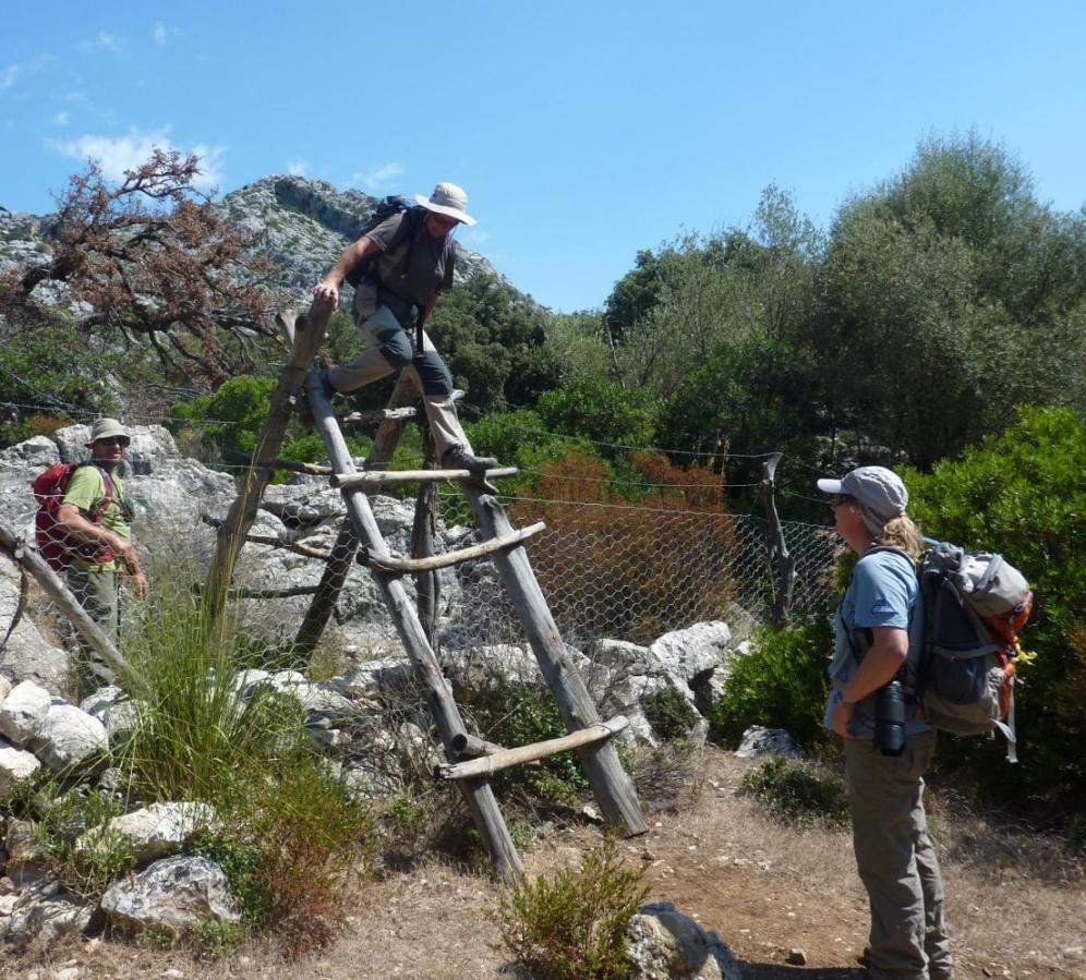 Varied Walking in Mallorca