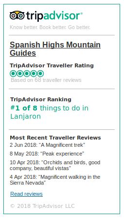 Trip Advisor Ratings