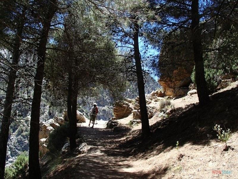 Las Arenales, Valle del Dilar 23 May 2014_14086004478_l-min