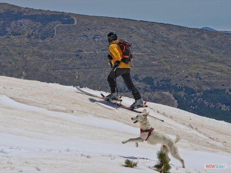 Ski Tour Las Alegas April 2014_14013696382_l-min
