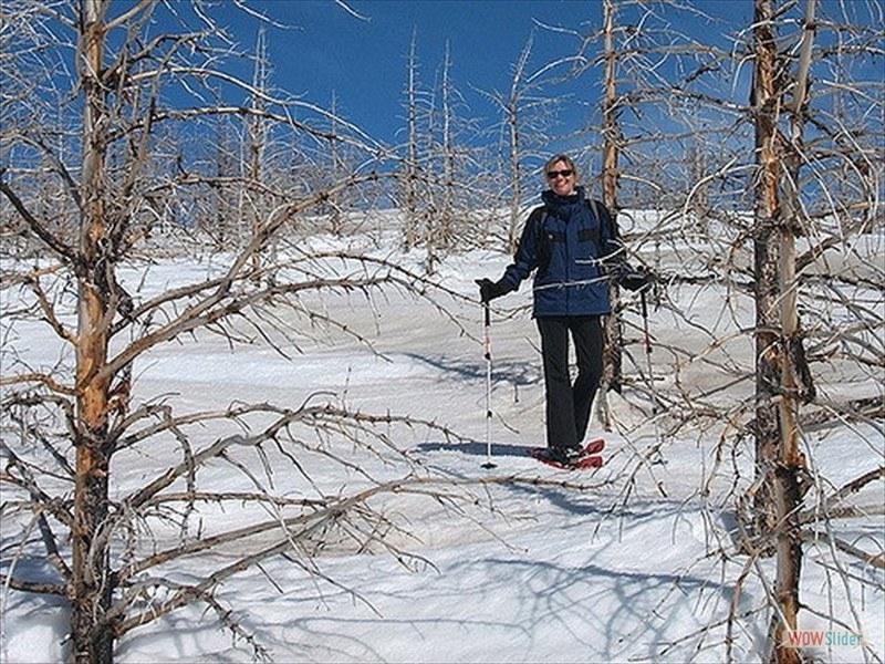 snowshoeing-12_3299485981_m-min