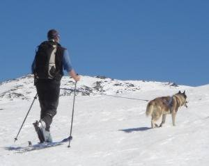 Skiing mid June in Spain with mad dogs