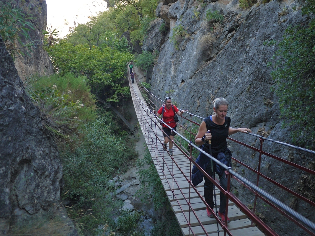 Bridge in the gorge