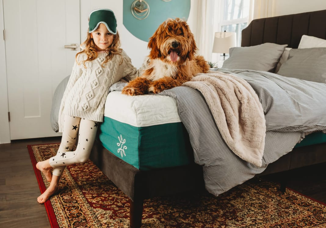 Child and dog on Zinus bed