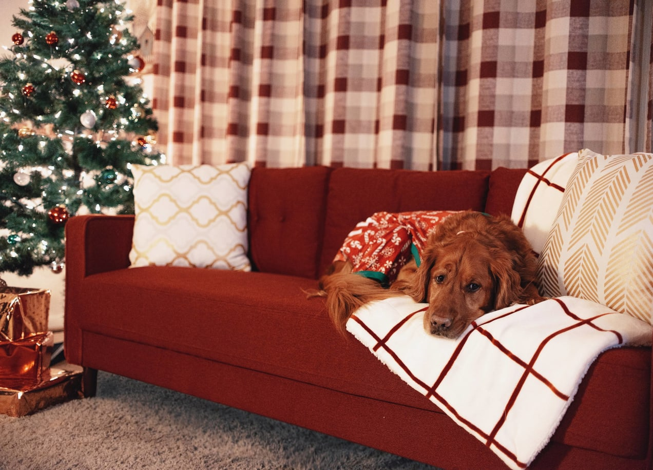 holiday decor for living room with red sofa