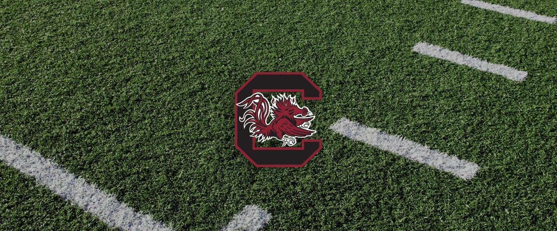 South Carolina Collegiate Silicone Rings, South Carolina logo on football field