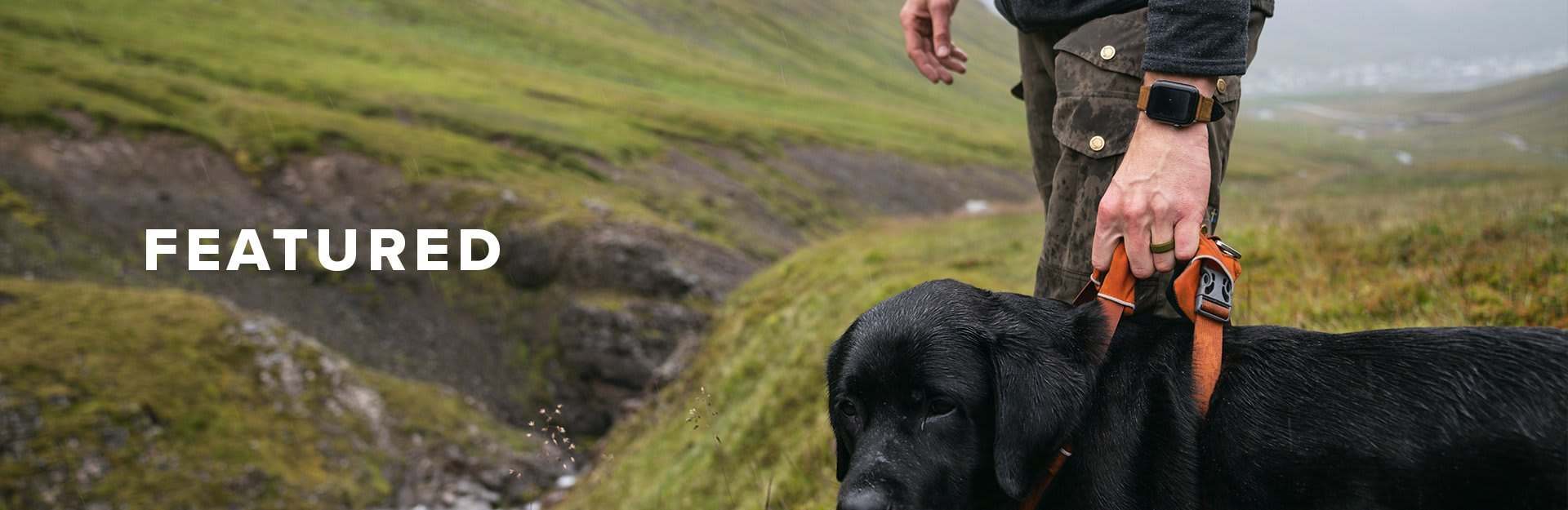 Featured, a man holds the collar of his black lab as he overlooks some valleys