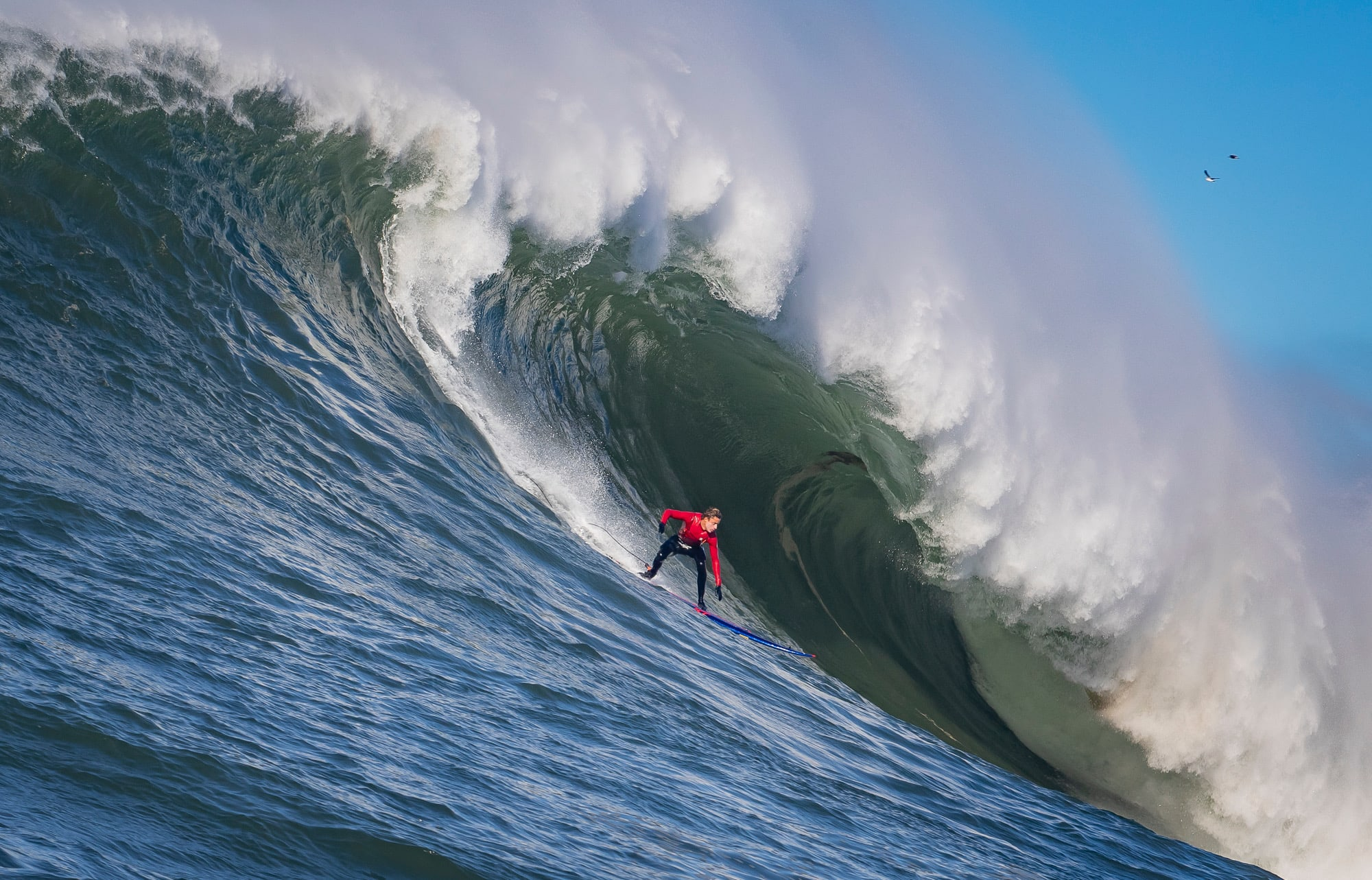 Ridge Lenny surfing mavericks California