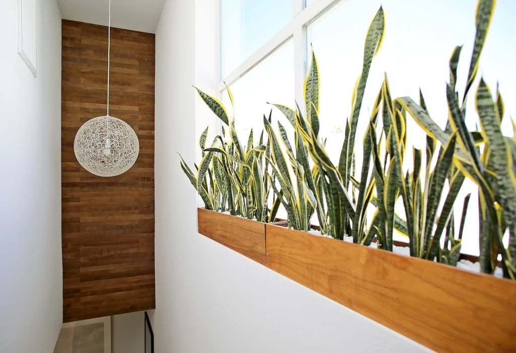 easy DIy peel and stick wood wall planks reclaimed wine barrel oak boho chic style