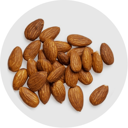 Superfood Protein Source