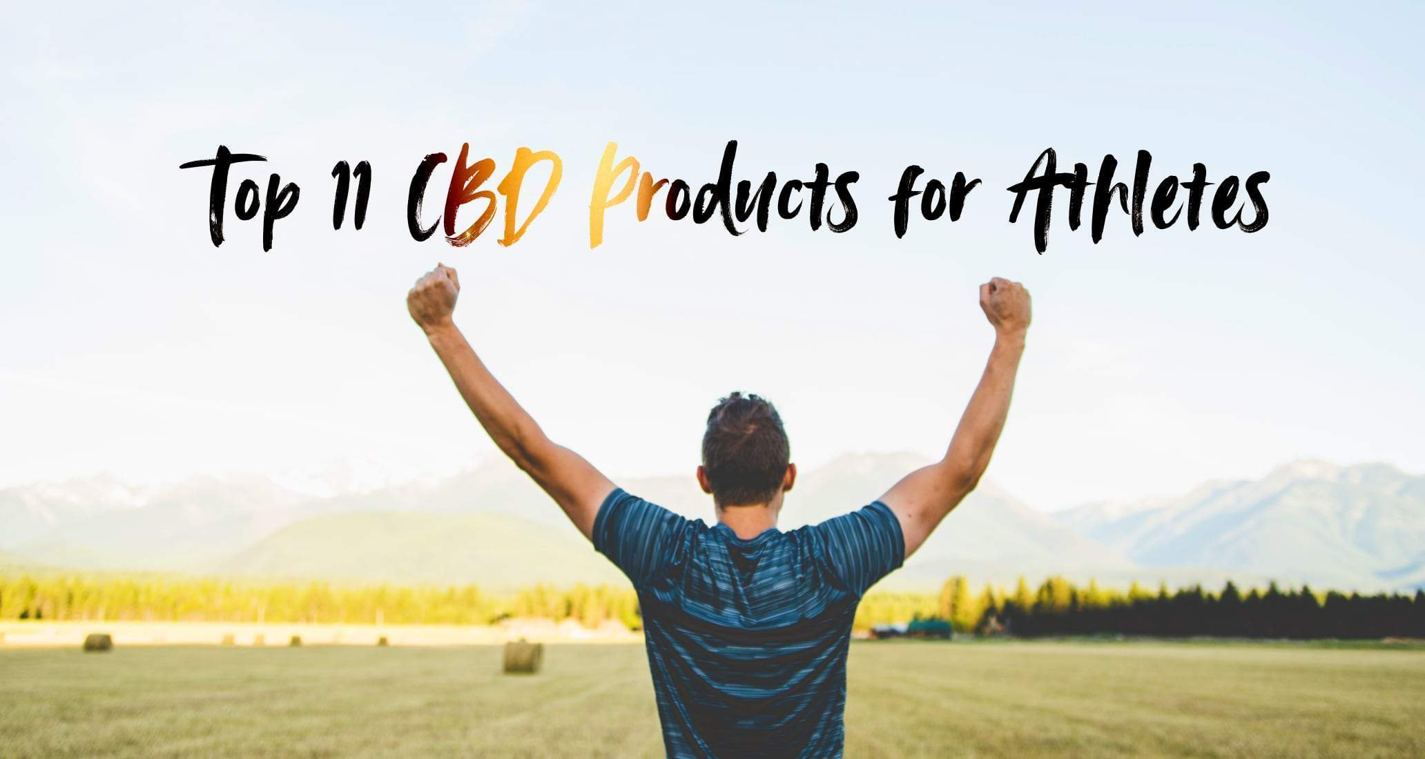 Top 11 CBD Products for Athletes | From real world testing by Feed Athletes