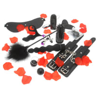 Porduct image for Amazing Pleasure Sex Toy Kit