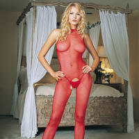 Porduct image for Leg Avenue Red Seamless High Neck Halter Bodystocking
