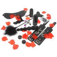 Porduct image for Amazing Pleasure Sex Toy Kit