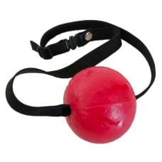 Buy Strawberry Candy Ball Gag Online