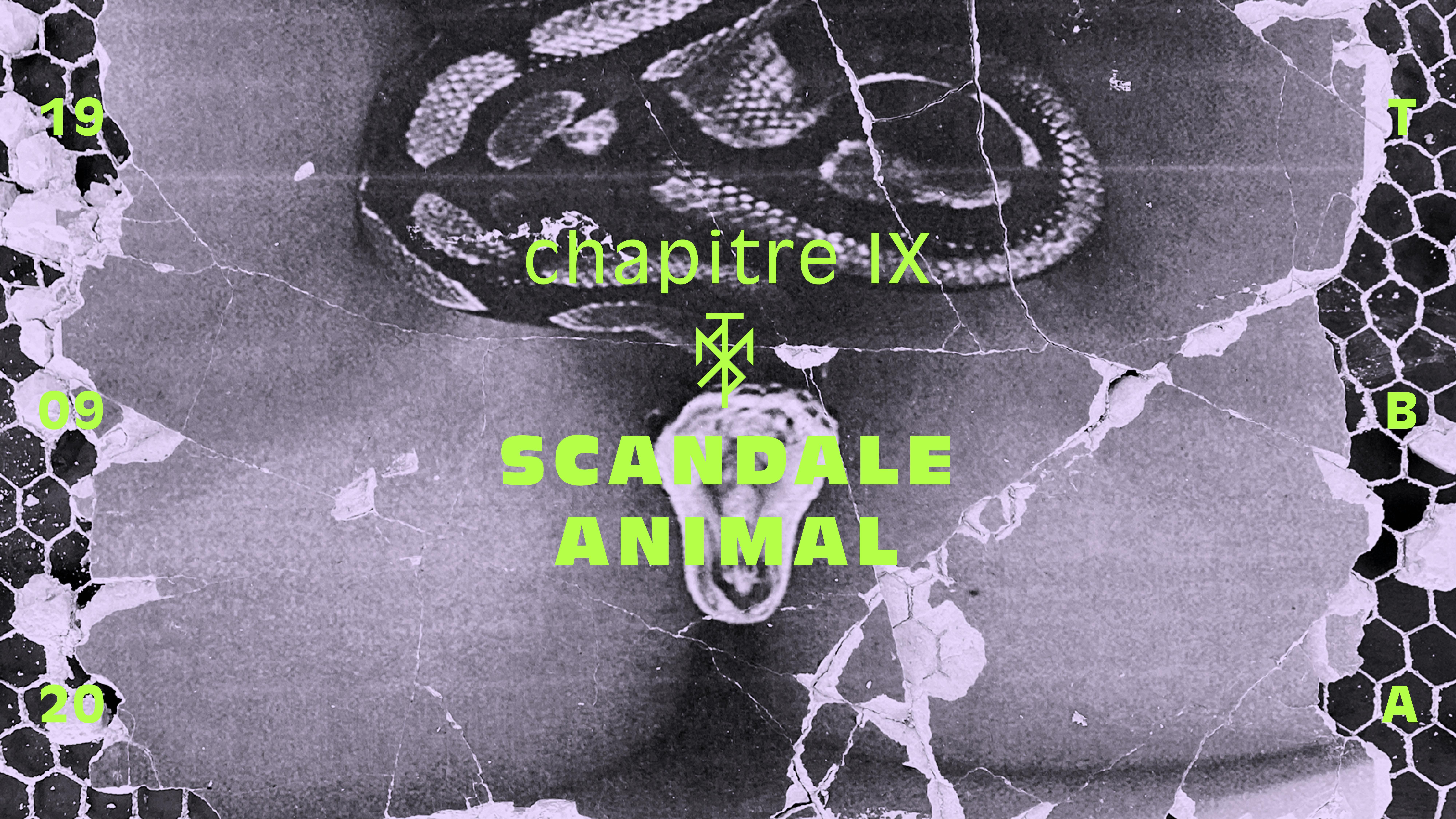 MYST 009 - Scandale Animal