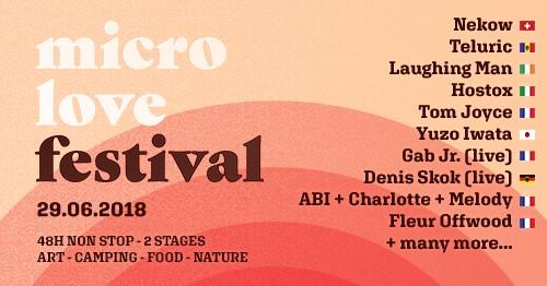 micro love festival ● Secret Paradise