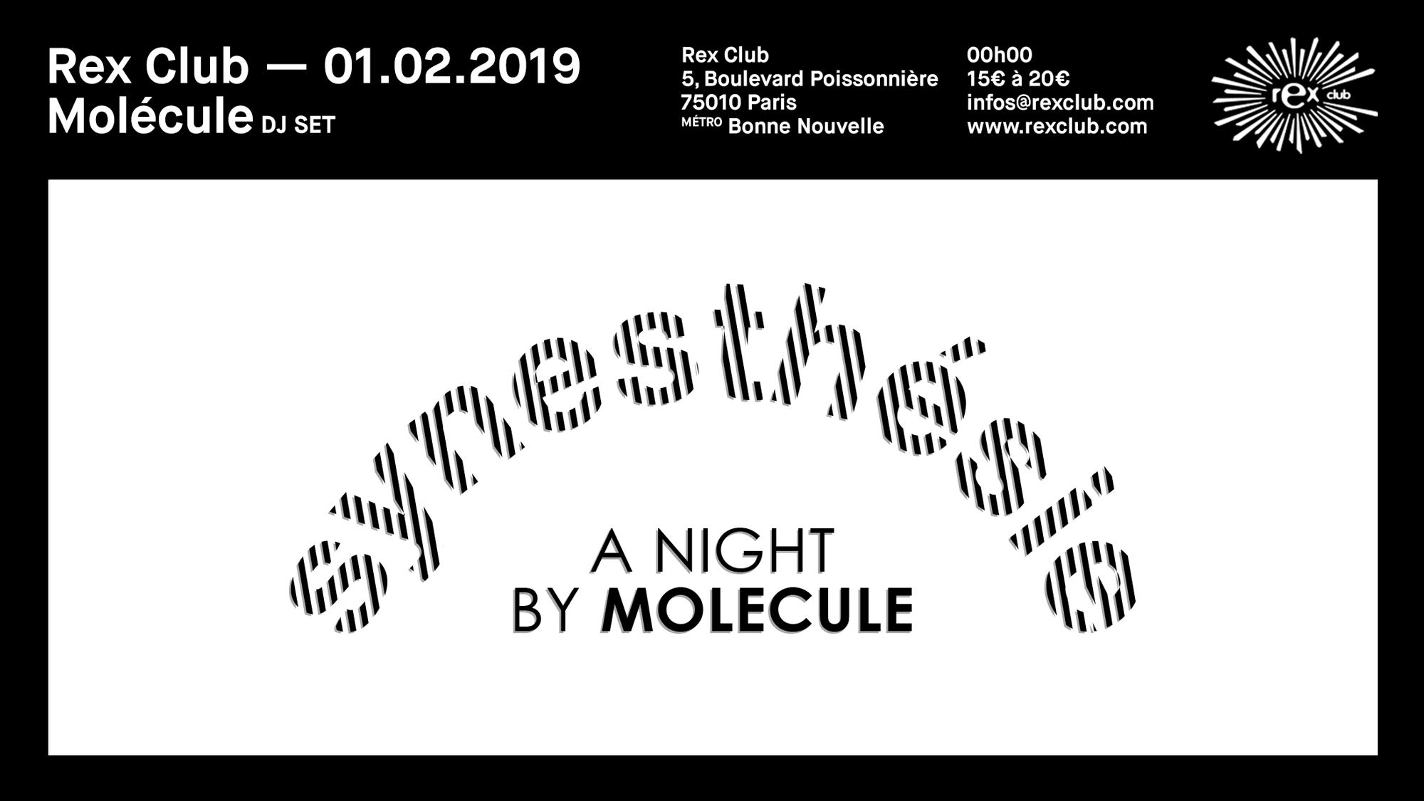 Synesthesie : A Night by Molecule w/ Andrew Claristidge & ZPKF