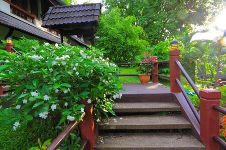 deck steps enclosed with luscious greenery