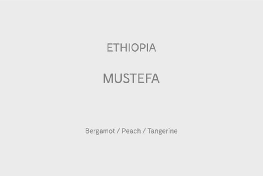 Ethiopia Mustefa | Strangers Coffee