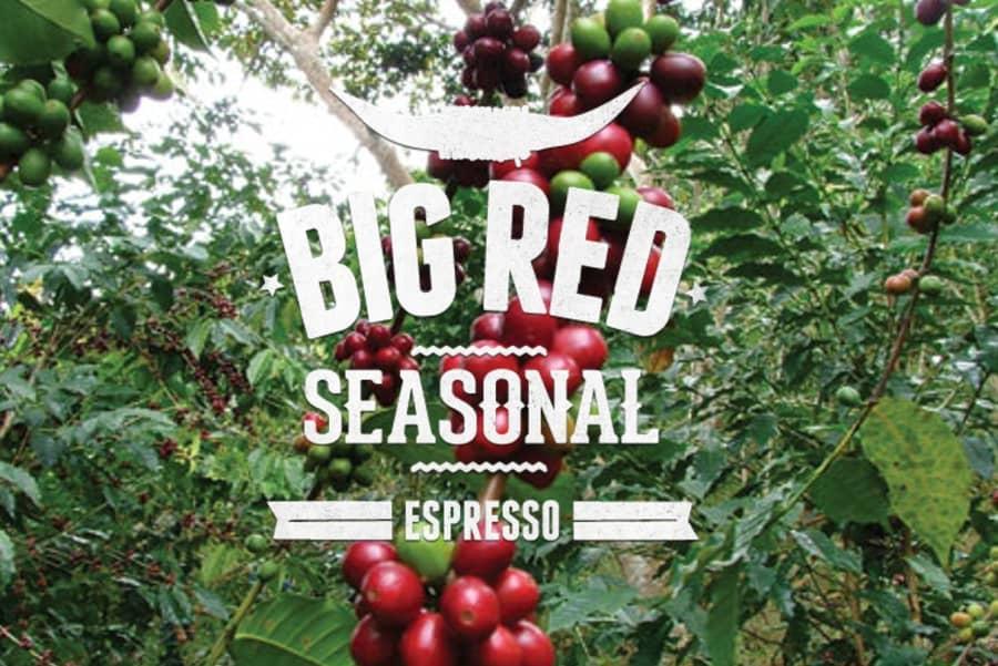 Big Red Seasonal Blend | Coffee Factory