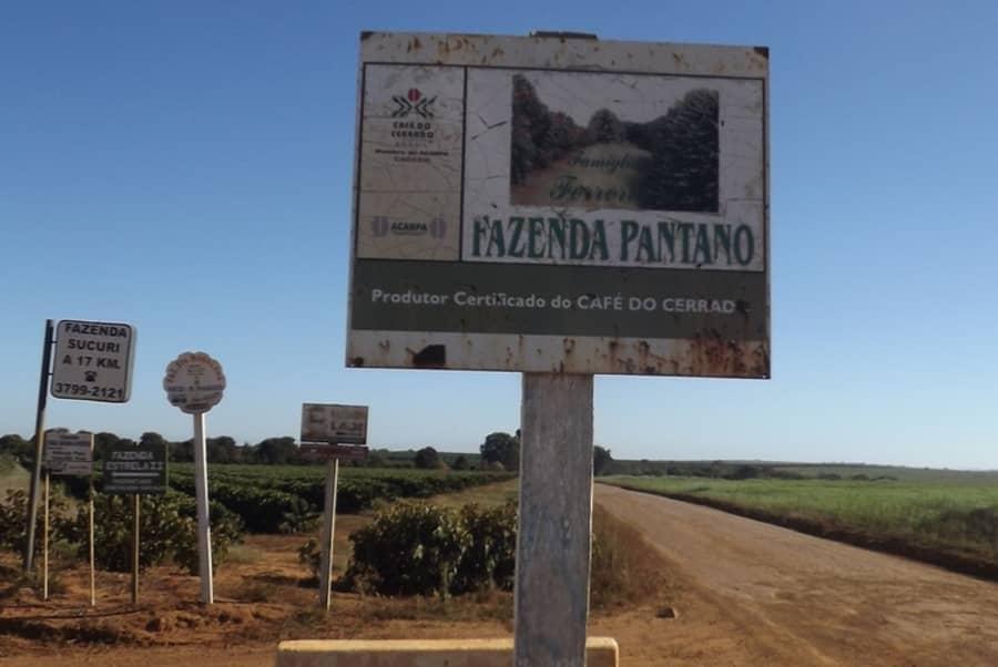 Brazil Fazenda Pantano | Coffee Factory