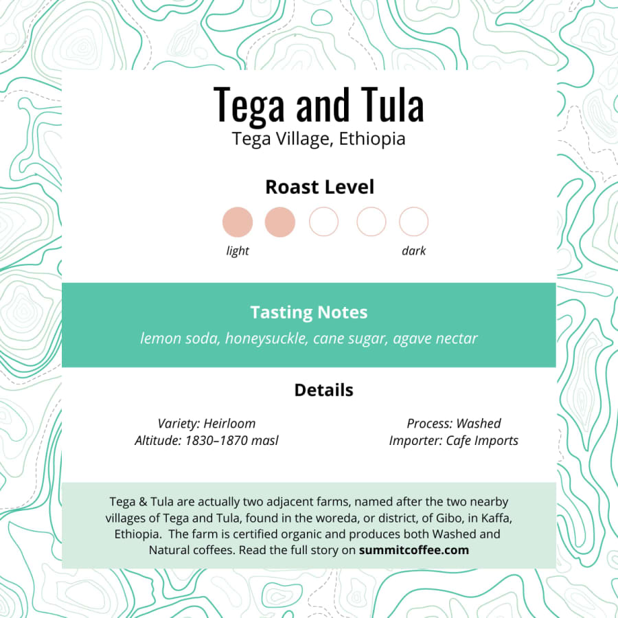 Tega and Tula | Summit Coffee Co.