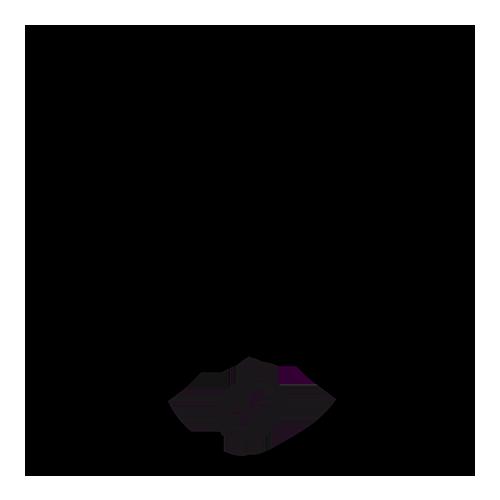 Blekinge Specialty Coffee logo