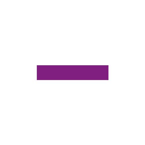 Flying Roasters logo
