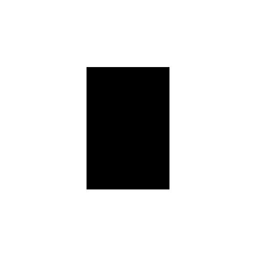 Nero Scuro logo