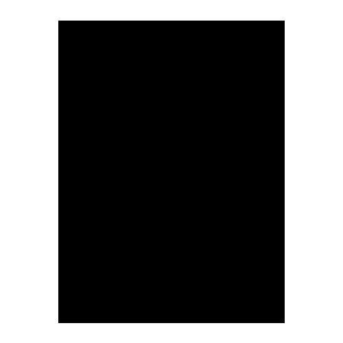 Paloma Coffee Roastery logo