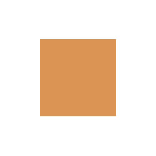 Saint Frank Coffee logo