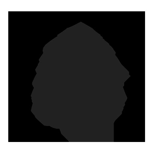 Scandinavian Alps Coffee Roasters logo