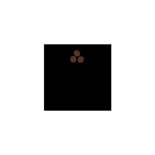 Sydney Coffee Roasters logo