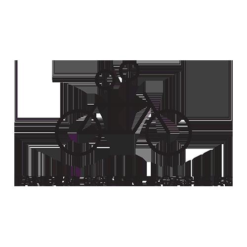 Tandem Coffee Roasters logo
