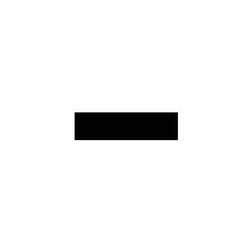 Lapchevsky Coffee logo