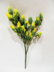 Planta decoración color...