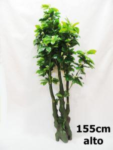 Planta Artificial 155cm ref...