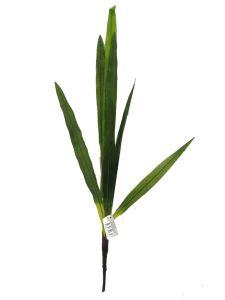 Hoja de planta delgada 75cm...