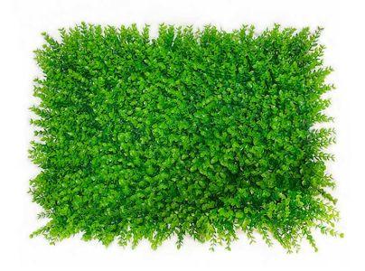 Plancha eucalipto pequeño...