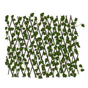 3 jardin con hojas pequeñas...