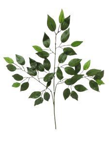 Rama de hojas verdes 50cm...